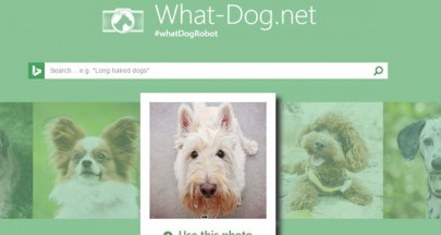 「What is your dog?」で犬種を自動判断